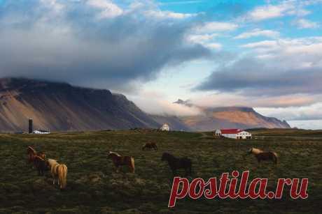 Исландия. Автор фото — Ярослав Макеев: nat-geo.ru/photo/user/44694/