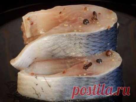 Слабосолёная сельдь с горчицей — никогда не ела такой вкуснятины! Маринад супер!