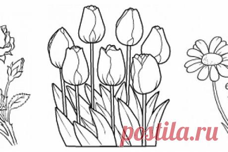 Бесплатные рисунки-контуры для вышивки: цветы и птицы Немного весеннего настроения, почитателей контурной вышивки и вышивки гладью, ждет на сайте Painel Criativo.