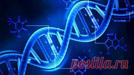 ОБЩАЯ БИОЛОГИЯ. ПОЛНЫЙ КУРС  1. Химия клетки - Неорганика, Углеводы, Жиры, Белки; 2. Химия клетки - Нуклеиновые кислоты, ДНК; 3. РНК и синтез белка; 4. АТФ и Энергетика клетки; 5. Клеточная теория и микроскопия; 6. Строение клетки - органоиды. 7. Митоз; 8. Мейоз; 9. Генетика I; 10. Генетика II.