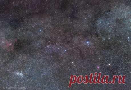 Целая кладовая космических сокровищ и созвездие Кассиопея на снимке Евгения Кудымова. Звездных снов!