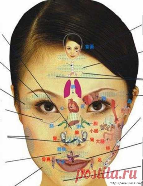 Китайский метод излечения практически от всех болезней – вращение трёх сфер или вращение трёх восьмёрок.