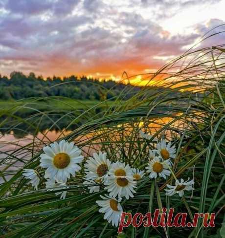 Час утренний — делам, любви — вечерний,  раздумьям — осень, бодрости — зима…  Весь мир устроен из ограничений,  чтобы от счастья не сойти с ума.  Булат Окуджава