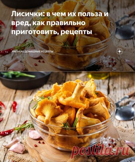 Лисички: в чем их польза и вред, как правильно приготовить, рецепты | Fresh.ru домашние рецепты | Яндекс Дзен