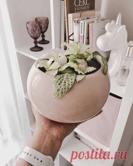 «Подруга подумала, что это Zara Home»: 12 товаров из Фикс Прайса, которые выглядят дорого