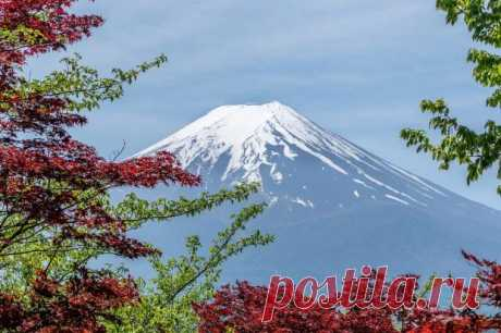 6 фактов об уровне гигиены в Японии превышающем все стандарты