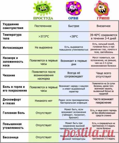 Как отличить грипп от обычной простуды — Полезные советы