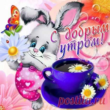 И в добром утре - вам добра!  И в новом дне - вам вдохновения!  Удачи, счастья и тепла,  И радостного настроения!