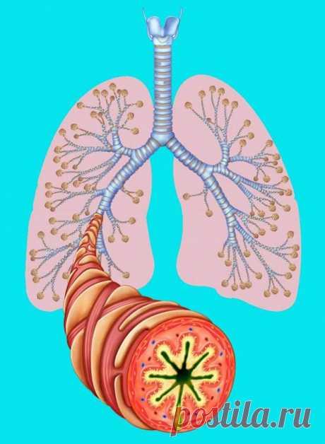 Сухой кашель – признак опасных недугов - Народная медицина - медиаплатформа МирТесен Сухой кашель возникает не только как симптом заболевания дыхательной системы. Например, мучительный кашель без мокроты может беспокоить при сердечной недостаточности. А сухой психогенный кашель проявляется как реакция организма на стрессовую ситуацию. При болезнях органов дыхания различают