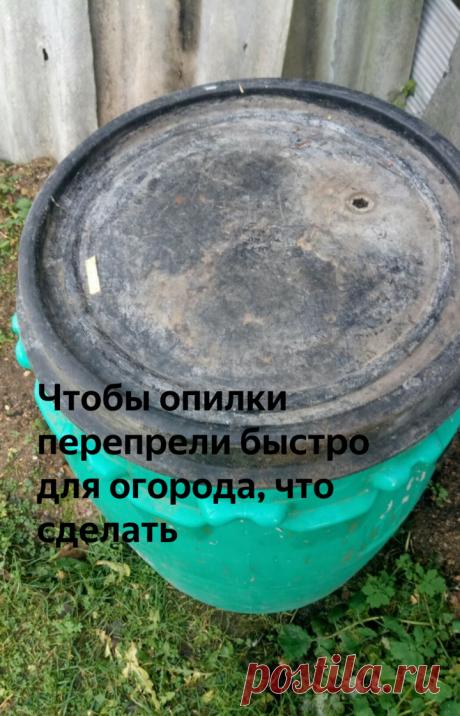 Чтобы опилки перепрели быстро для огорода, что сделать | Дачная жизнь | Яндекс Дзен