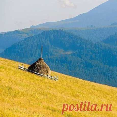 Stubble by the mountains - beautifully unforgettable!-Жнива у горах - красиво й незабутньо!