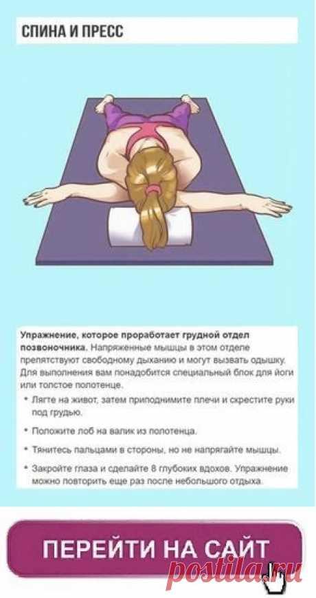 Los ejercicios