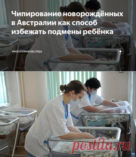 Чипирование новорождённых в Австралии как способ избежать подмены ребёнка   Философия абсурда   Яндекс Дзен