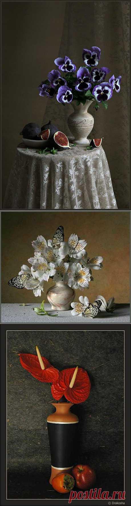 Натюрморт в фотографии | Искусство