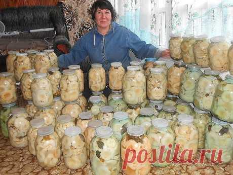 ГРУЗДИ СОЛЕНЫЕ - 7 РЕЦЕПТОВ  1. ГРУЗДИ СОЛЕНЫЕ БЕЗ ДОБАВЛЕНИЯ СПЕЦИЙ  Для того чтобы приготовить грузди по этому старому и простому рецепту, нужно взять:  Соль крупная, можно обычная - 250 грамм; Грузди - 5 килограмм вымоченных грибов;  Собранные вами грузди нужно сначала хорошо почистить, убрать все места, которые вам кажутся подозрительными. Червивые участки нужно срезать, а также не оставлять те места, в которые есть проколы от хвои. После нужно отрезать у каждого гриба...