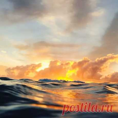 Пусть солнце дарит всем свой тёплый лучик, Чтобы любовью каждый был согрет, И мир, вдруг, станет и добрей, и лучше... А остальное - суета сует.  Лариса Миллер
