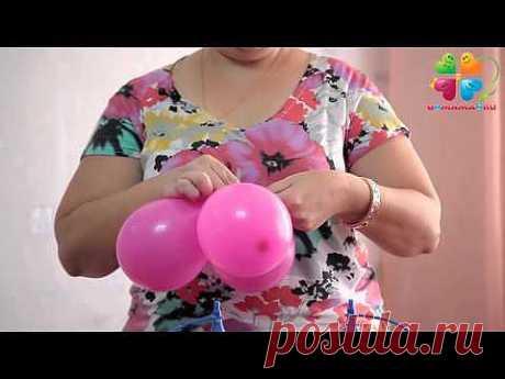 ▶ Как сделать цветок из круглых воздушных шаров - YouTube
