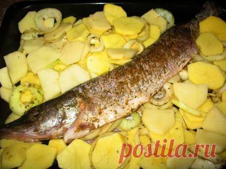 Готовим щучку пропитанную пряностями.... На противень и слой картошки,лука,опять картошки... Когда практически готово добавила морковь,стручковый горошек,чуть кукурузы.