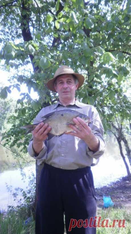 Владимир Гордиенко