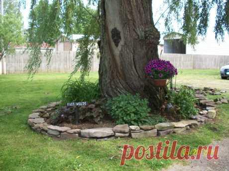 Оригинальные идеи сочетания цветов и деревьев — Сделай сам, идеи для творчества - DIY Ideas