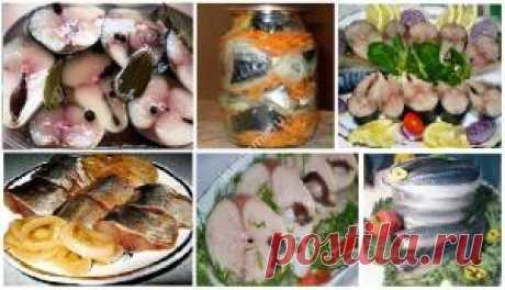 5 САМЫХ ПРОВЕРЕННЫХ рецептов засолки рыбы