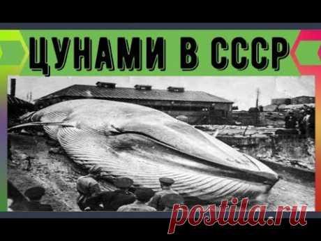 Цунами в СССР Советский город смытый в океан - YouTube
