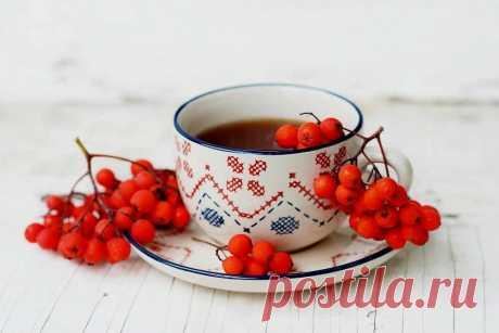 3 рецепта вкусного и лечебного домашнего чая для крепкого иммунитета, хорошего самочувствия и отличного настроения   Моя домашняя кухня   Яндекс Дзен