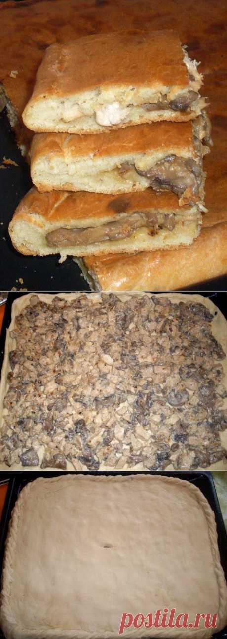 Пирог с курицей и грибами из бездрожжевого теста на кефире | Четыре вкуса