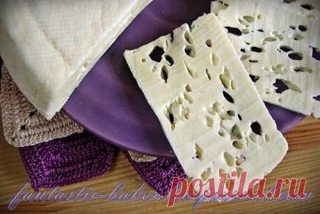 Домашний сычужный сыр на ферменте Meito - Я и моя хлебопечка