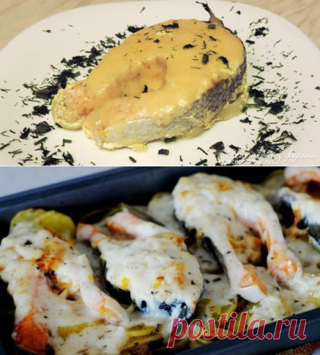 Roasting of a trout: the most tasty recipes of preparation of the baked trout with a photo. - Part 2