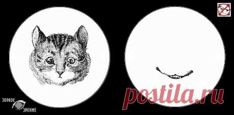 ⌘ ЗАРЯДКА ДЛЯ ГЛАЗ ⌘  Верни чеширскому коту улыбку!  Перед вами одно из сильнейших упражнений для тренировки зрительной системой и осознанного управления мышцами глаз. Показать полностью...