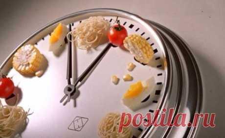 Время переваривания пищи в желудке.