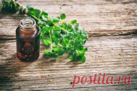 OREGANO OIL against bacteria, fungal and barmy infections!