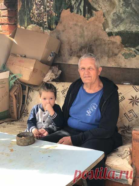 С какой травой с грядки можно заварить вкусный чай - советы моего дедушки | Сладкий Персик 🍑 | Яндекс Дзен