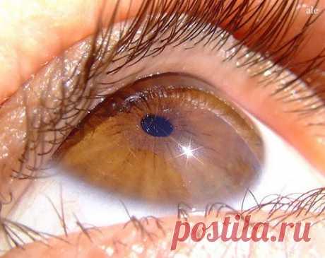 Народные средства при ослаблении зрения