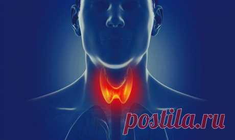 Точки, которые оздоравливают щитовидную железу / Будьте здоровы
