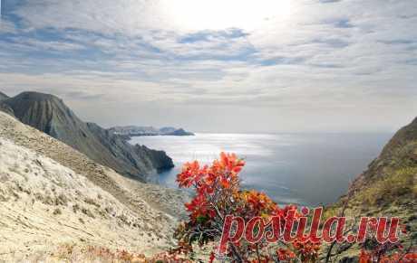 осенняя прогулка :: viton – Социальная сеть о фотографии ФотоКто