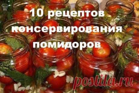 10 рецептов консервирования помидоров (сохраняем заранее, чтобы не забыть!) 1. ТОМАТЫ 'ПАЛЬЧИКИ ОБЛИЖЕШЬ' Ингредиенты:  - 3 кг помидоров,  - 200 г зелени,  - 1 головка чеснока,  - 100 г репчатого лука. Маринад:  - 3 л воды, 2 ст.ложки соли,  - 9 ст.ложек сахара, 2-3 шт. лаврового листа,  - 3 шт. перца горошком, 1 стакан 9%-ного уксуса. Приготовление: Томаты, вымыть. Банку пропарить, на дно положить рубленую зелень (укроп, петрушка, лист вишни), чеснок, влить 3 ст.ложки ра...