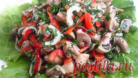 Салат «Пальчики оближешь» с грибами: съедается за миг - My izumrud