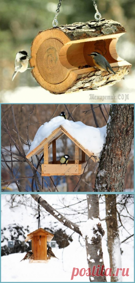 Кормушка для птиц: идеи как сделать своими руками из подручных средств