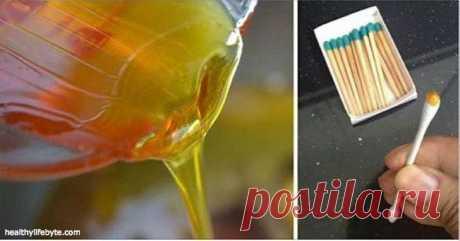 Pocket: Лучший способ отличить настоящий мед от поддельного