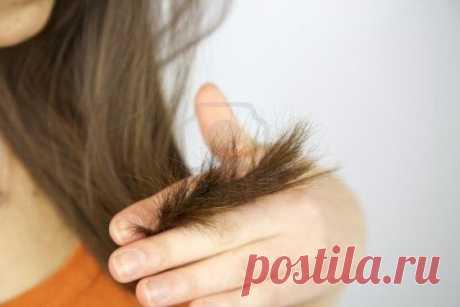 Эффективные маски для волос с медом: рецепты