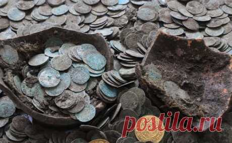 Как словацкие кабаны клад 15 века выкопали
