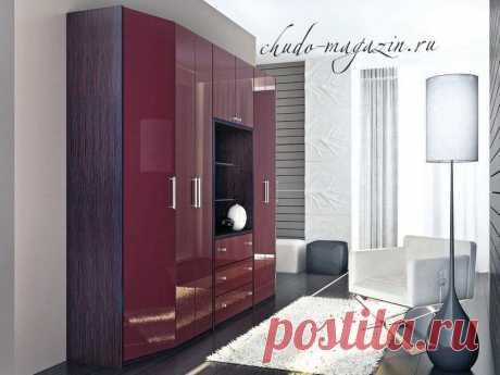 Распашной шкаф в гостиную с открытым модулем в интерьере: фото, материалы