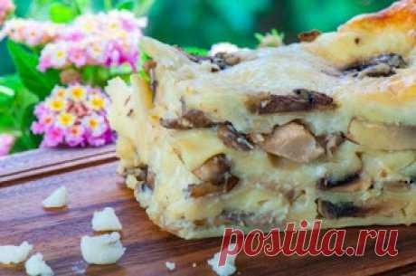 Самые вкусные рецепты: Грибная лазанья