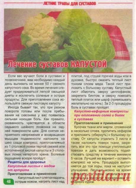 Лечение суставов капустой