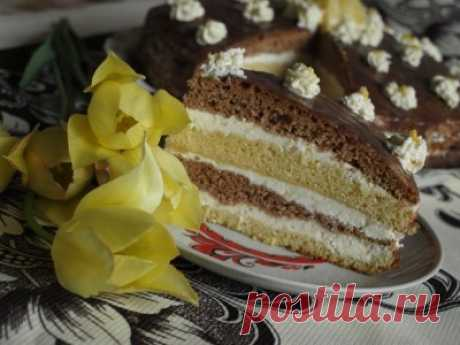 Нежный торт с лимонным кремом : Торты, пирожные