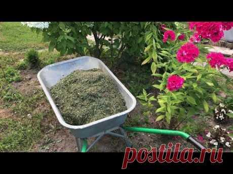 560. 7 способов использования скошенной травы