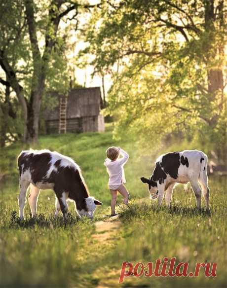 (3) Наш мир - удивительный , и красивый, весёлый и мудрый.