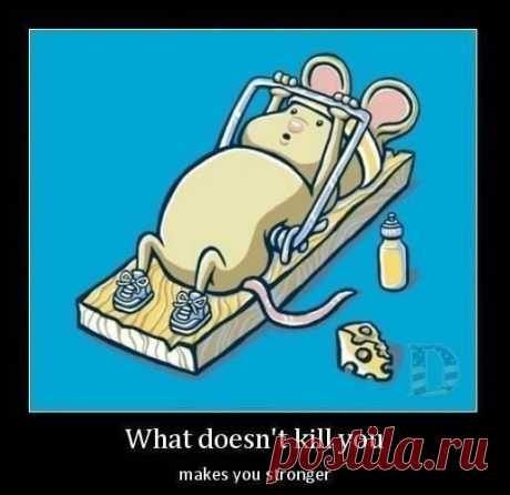 То, что не убивает, делает тебя сильнее!
